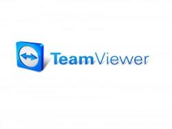Teamviewer-Logo (Bild: Teamviewer)