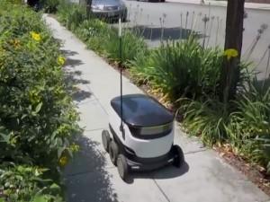 Starship-Robot (Bild: Starship Technologies)
