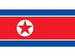 Flagge von Nordkorea (Bild: Public Domain)